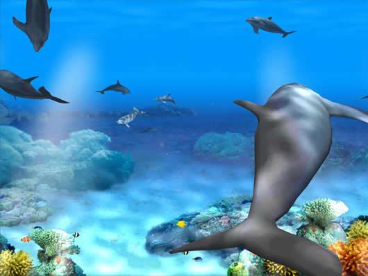 Protector De Pantalla Para Windows 7 Living 3d Dolphins Screensaver