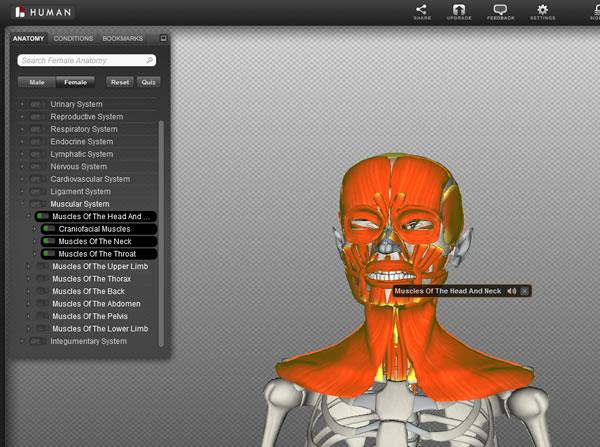 BioDigital Human, la anatomía humana mostrada en 3D