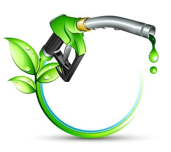 Bacteria puede generar combustible verde a partir del Dióxido de Carbono