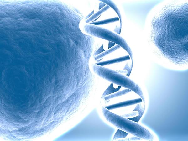 Olvídate de los discos duros: el ADN puede ser la próxima forma de almacenamiento de información