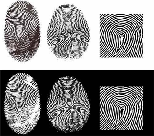 Científicos chinos crean sustancia que hace brillar las huellas dactilares