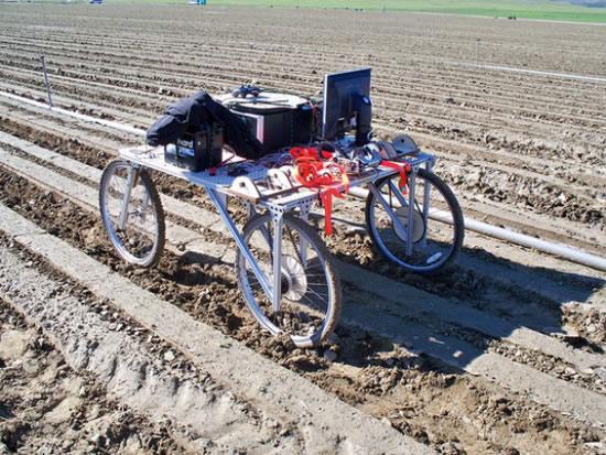 Lettuce Bot, prototipo de robot que reconoce y elimina las malas hierbas