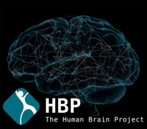 Súper Ordenador pretende simular el cerebro humano