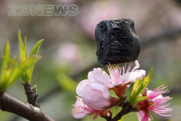 Una esponja de grafeno es el material solido más liviano del mundo