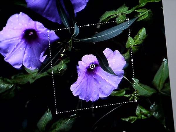 Photoshop Camera Shake Reduction permitirá corregir imágenes borrosas