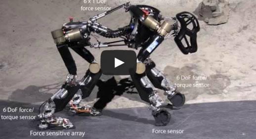 Robot mono, el prototipo de un robot creado por científicos alemanes