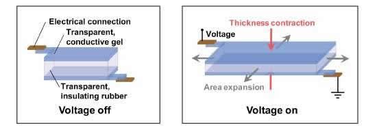 membrana aislante